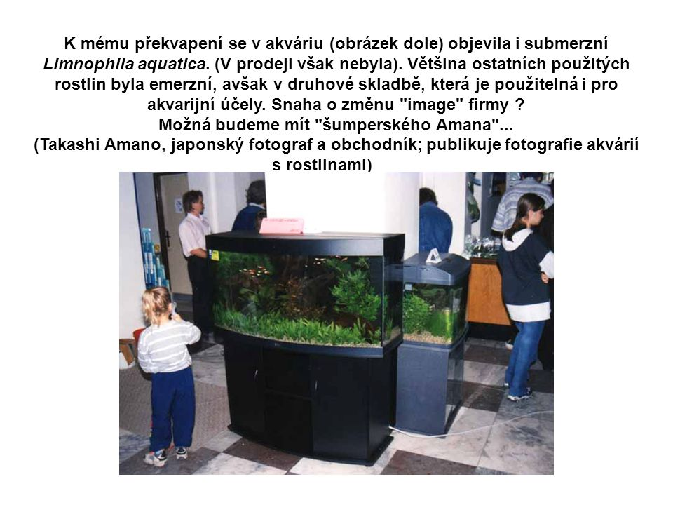 K mému překvapení se v akváriu (obrázek dole) objevila i submerzní Limnophila aquatica. (V prodeji však nebyla). Většina ostatních použitých rostlin byla emerzní, avšak v druhové skladbě, která je použitelná i pro akvarijní účely. Snaha o změnu image firmy Možná budeme mít šumperského Amana ...