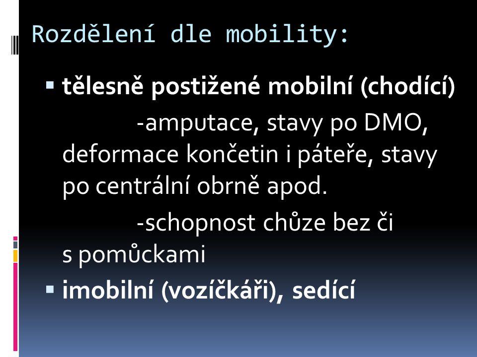 Rozdělení dle mobility: