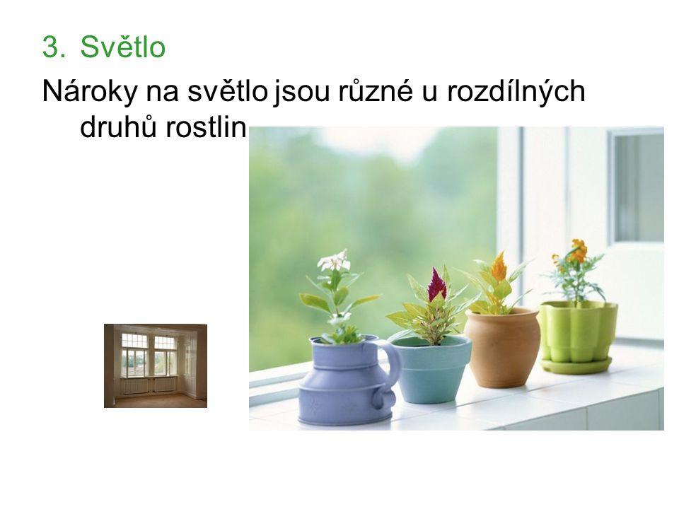 Světlo Nároky na světlo jsou různé u rozdílných druhů rostlin.