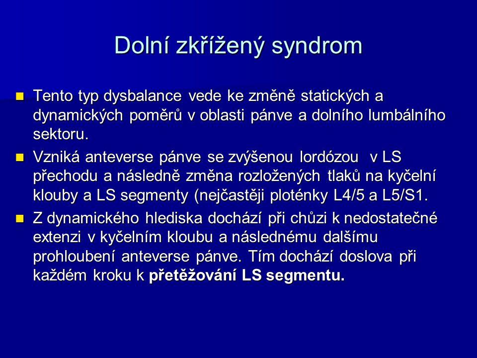 Dolní zkřížený syndrom