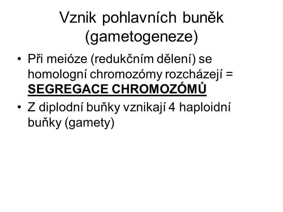 Vznik pohlavních buněk (gametogeneze)