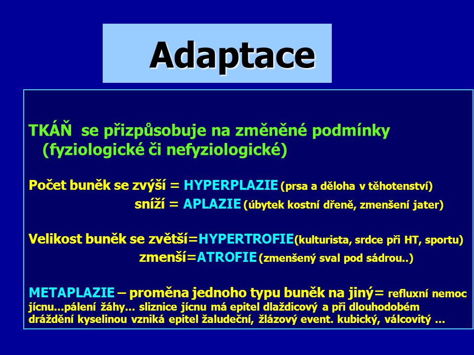 Adaptace TKÁŇ se přizpůsobuje na změněné podmínky
