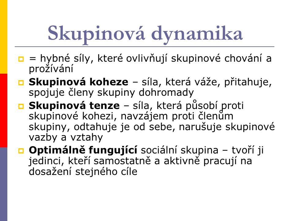 Skupinová dynamika = hybné síly, které ovlivňují skupinové chování a prožívání.