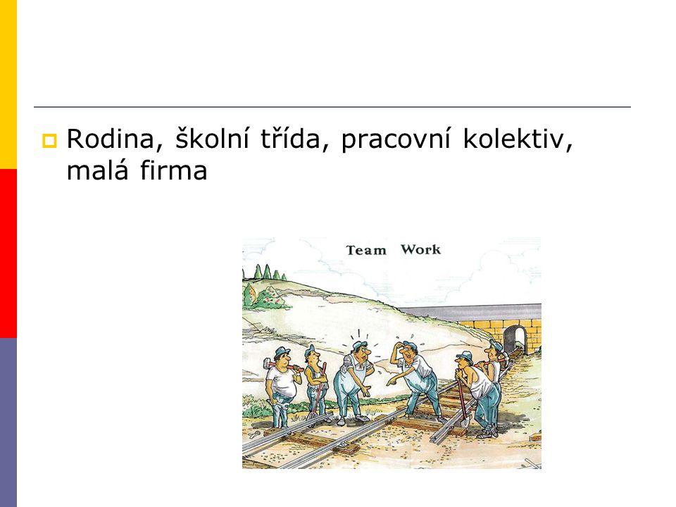 Rodina, školní třída, pracovní kolektiv, malá firma