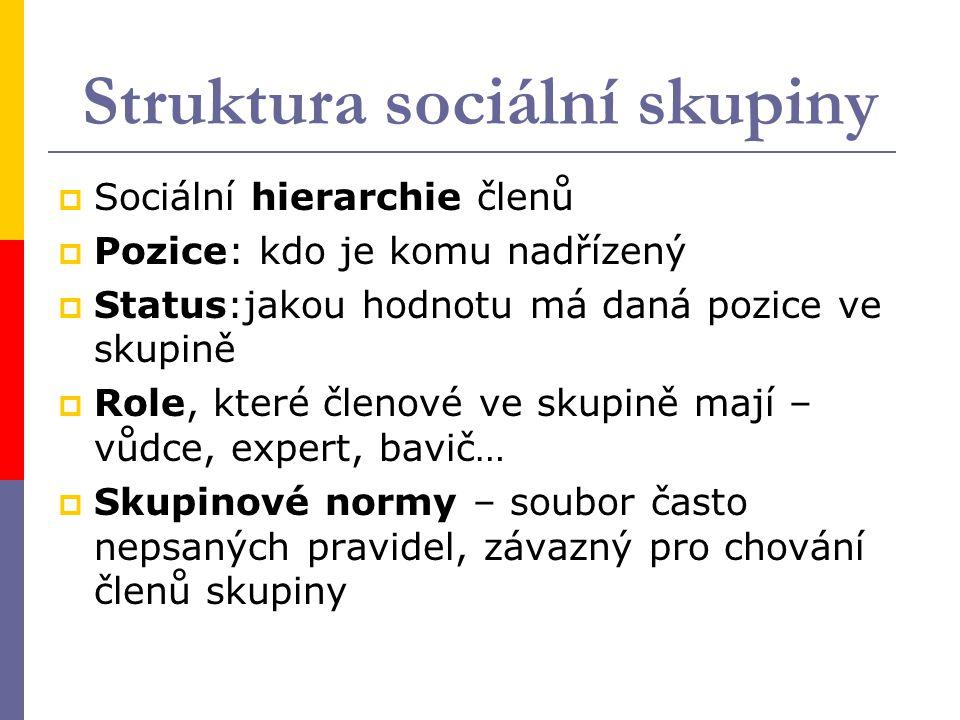 Struktura sociální skupiny