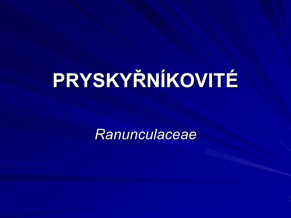 PRYSKYŘNÍKOVITÉ Ranunculaceae