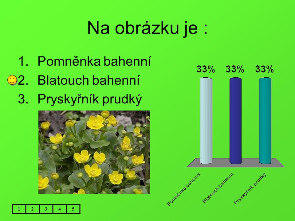 Na obrázku je : Pomněnka bahenní Blatouch bahenní Pryskyřník prudký 1