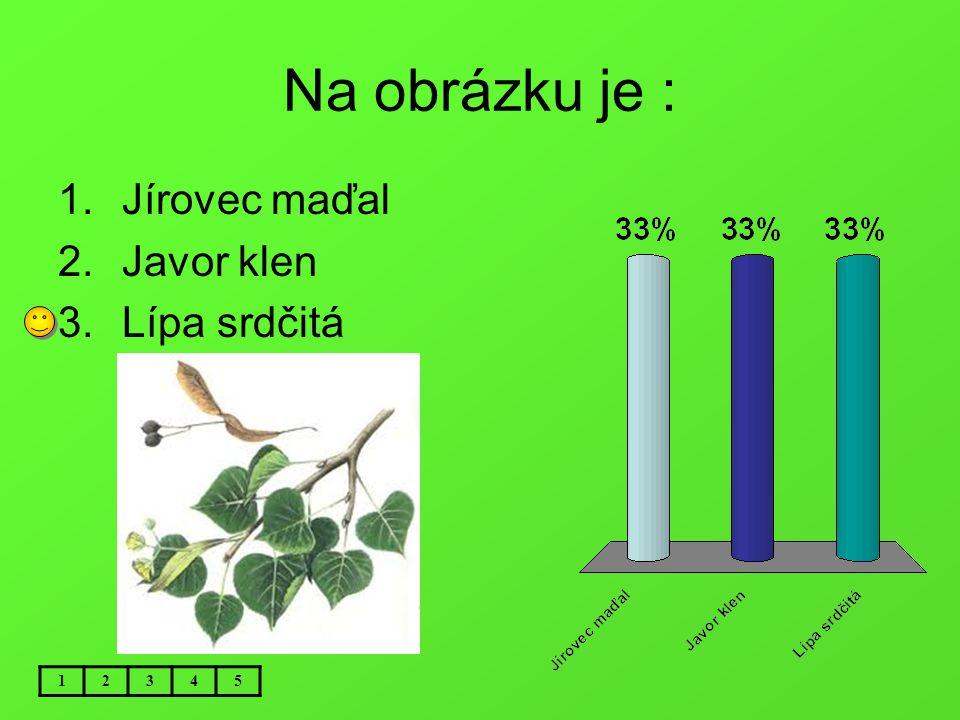 Na obrázku je : Jírovec maďal Javor klen Lípa srdčitá 1 2 3 4 5