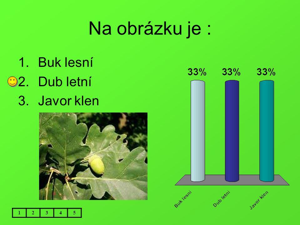 Na obrázku je : Buk lesní Dub letní Javor klen 1 2 3 4 5