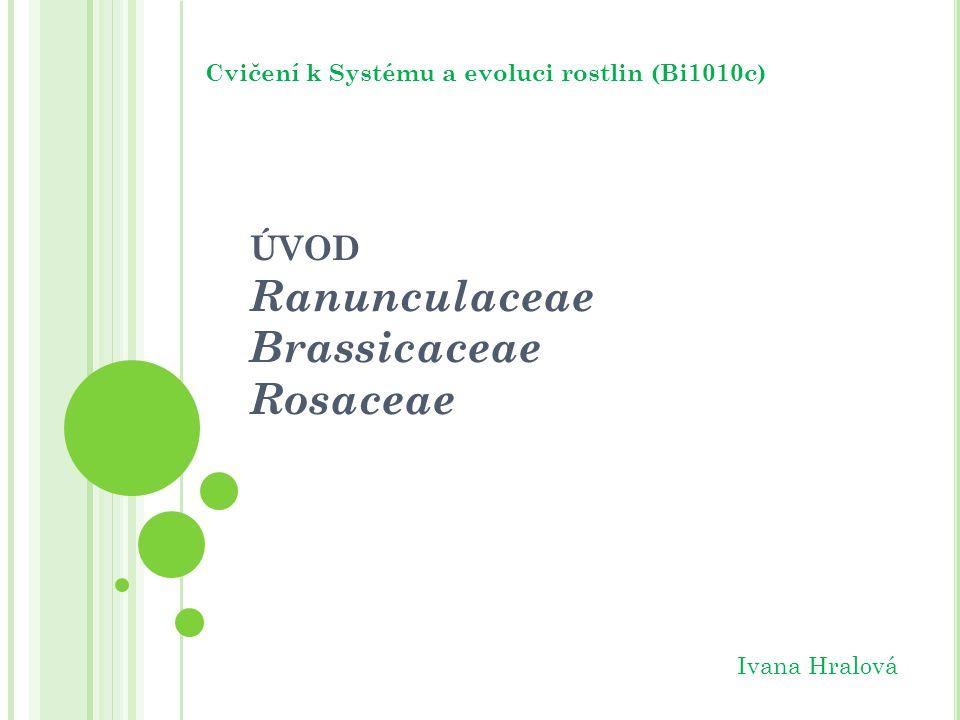 úvod Ranunculaceae Brassicaceae Rosaceae