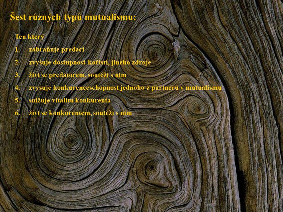 Šest různých typů mutualismu: