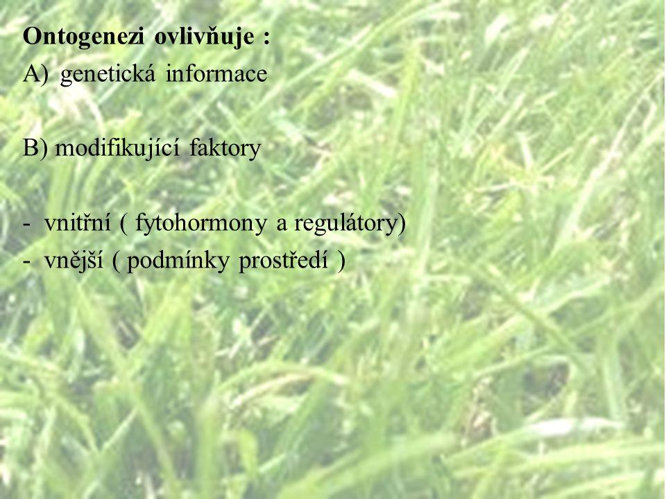 Ontogenezi ovlivňuje :