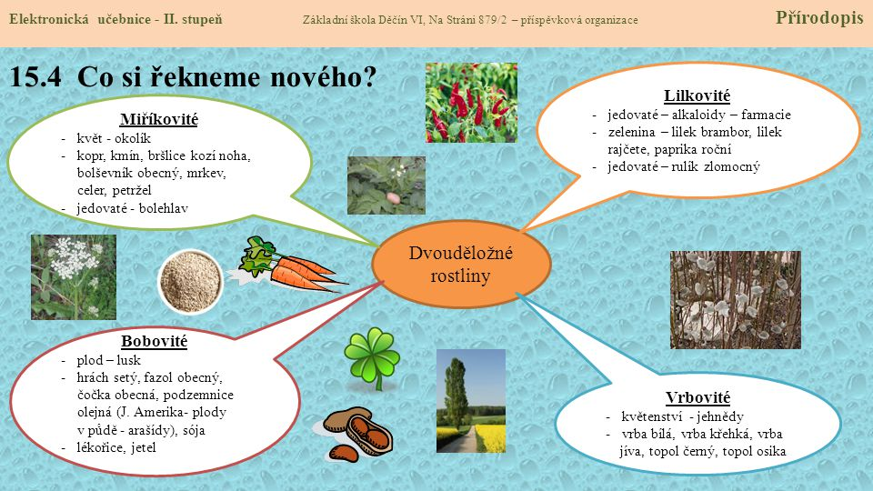15.4 Co si řekneme nového Dvouděložné rostliny Lilkovité Miříkovité
