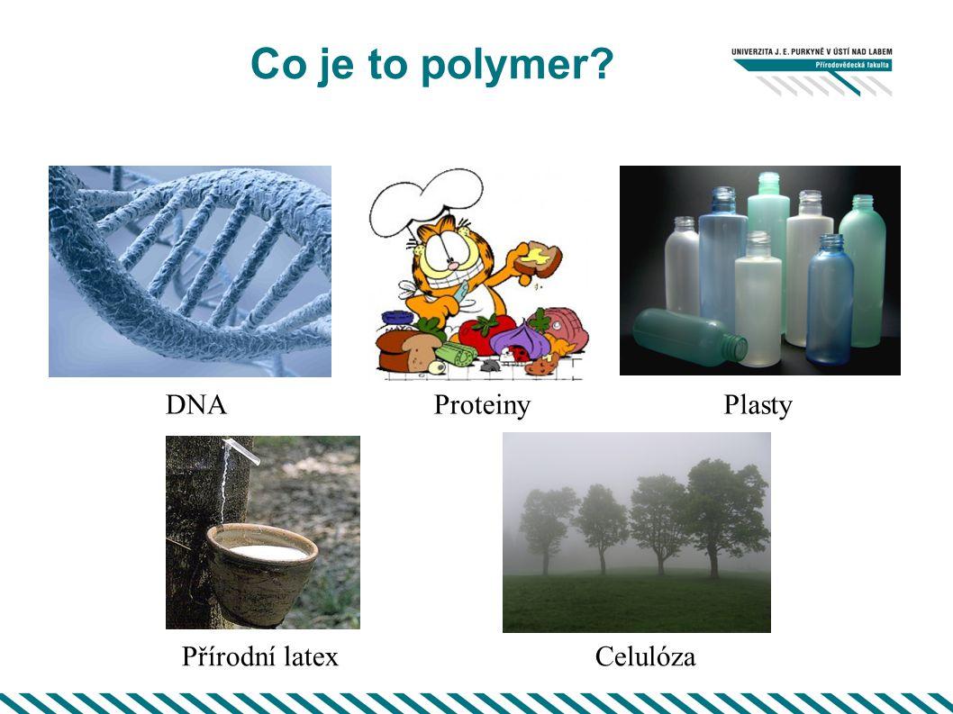 Co je to polymer DNA Proteiny Plasty Přírodní latex Celulóza