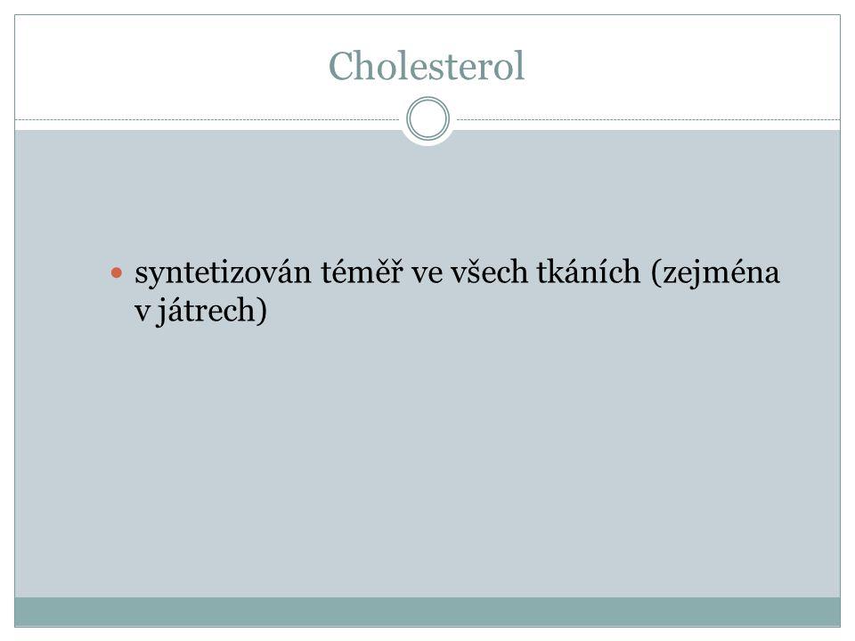 Cholesterol syntetizován téměř ve všech tkáních (zejména v játrech)