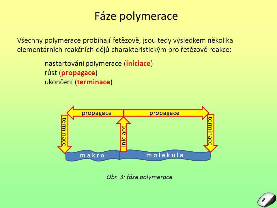 Fáze polymerace