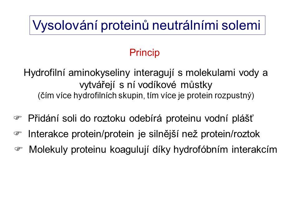 Vysolování proteinů neutrálními solemi