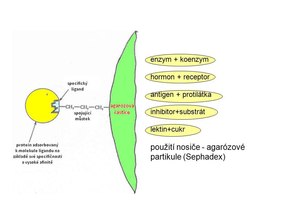 použití nosiče - agarózové partikule (Sephadex)