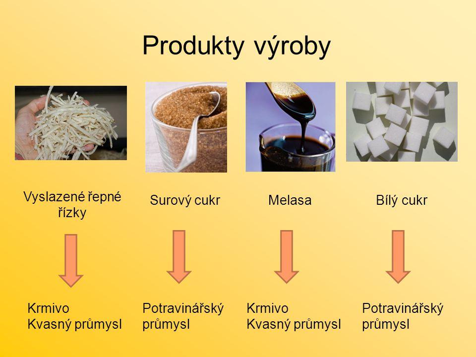Produkty výroby Vyslazené řepné řízky Surový cukr Melasa Bílý cukr