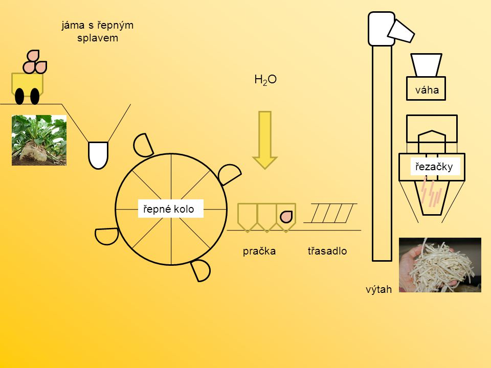 H2O jáma s řepným splavem váha řezačky řepné kolo pračka třasadlo