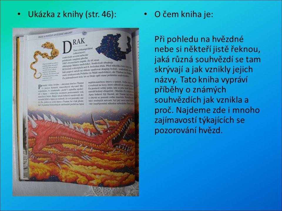 Ukázka z knihy (str. 46): O čem kniha je: