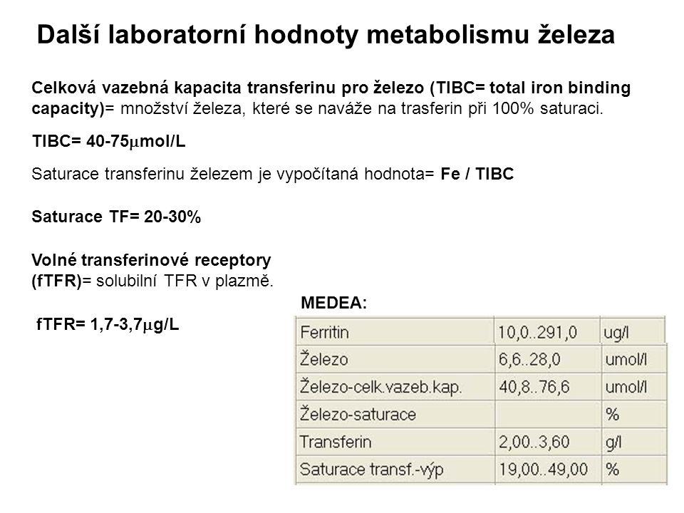 Další laboratorní hodnoty metabolismu železa