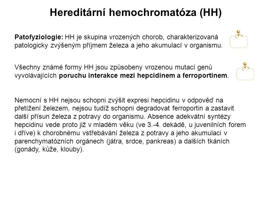 Hereditární hemochromatóza (HH)