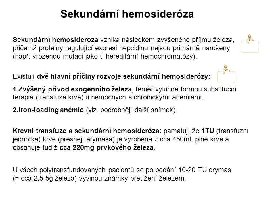 Sekundární hemosideróza