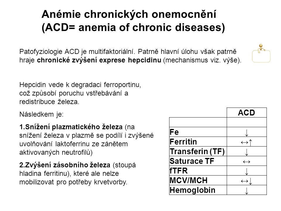 Anémie chronických onemocnění (ACD= anemia of chronic diseases)