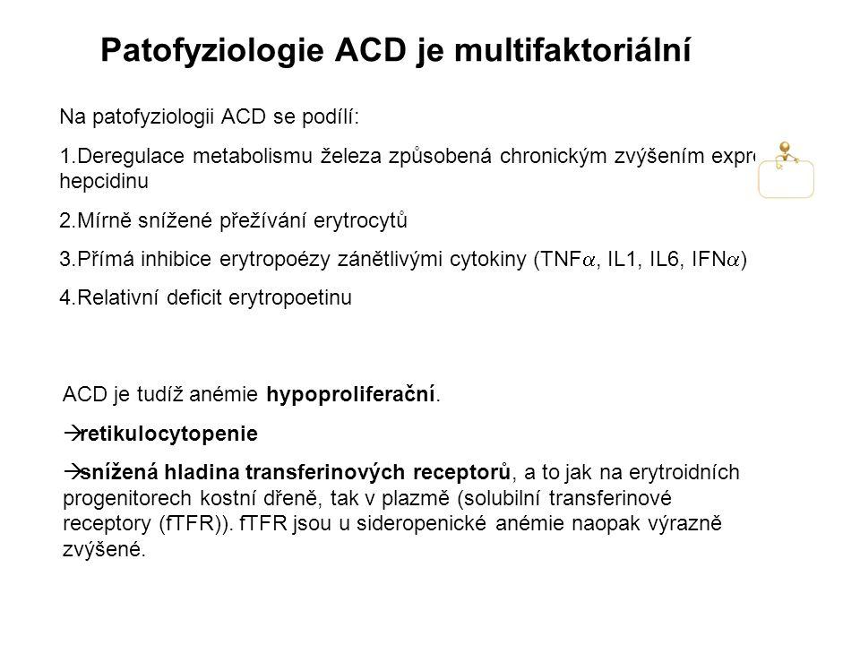 Patofyziologie ACD je multifaktoriální