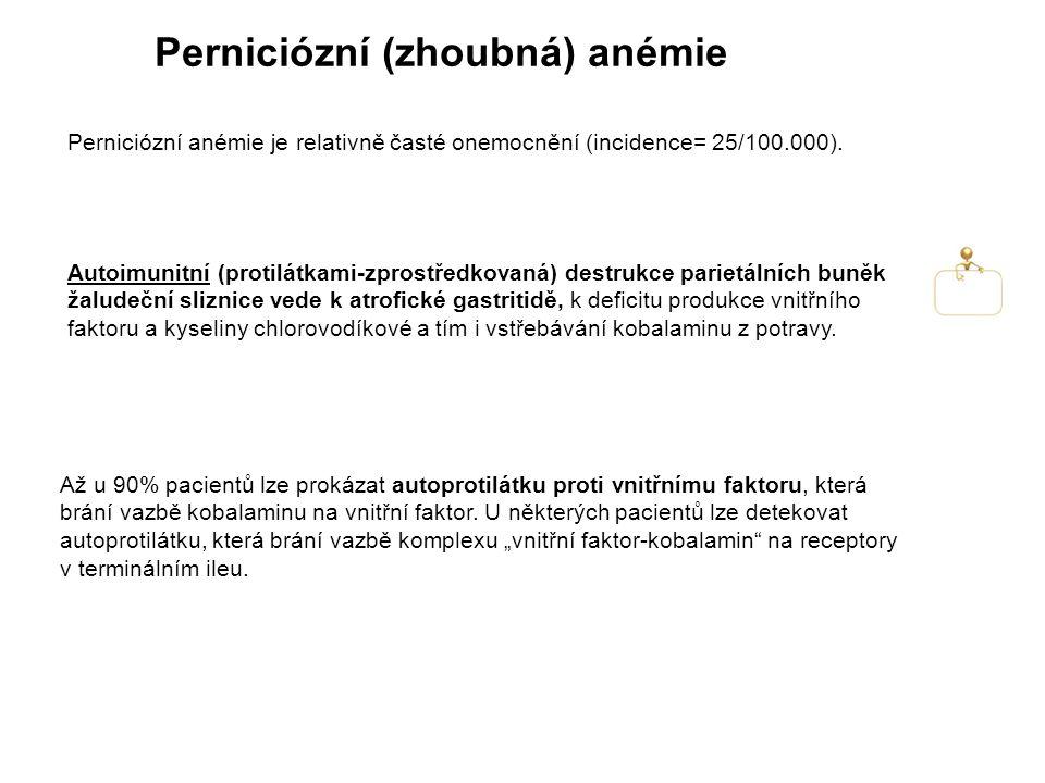 Perniciózní (zhoubná) anémie