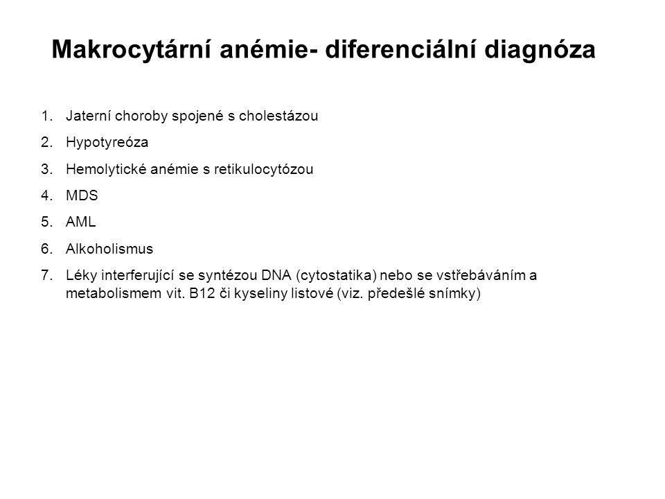 Makrocytární anémie- diferenciální diagnóza