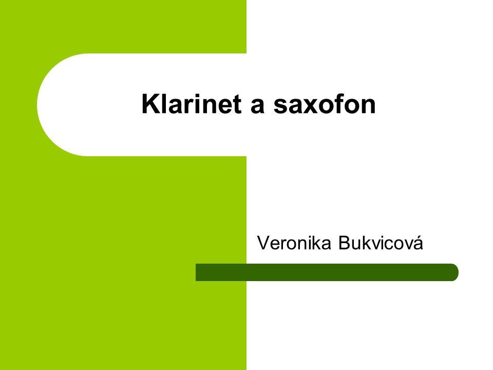 Klarinet a saxofon Veronika Bukvicová