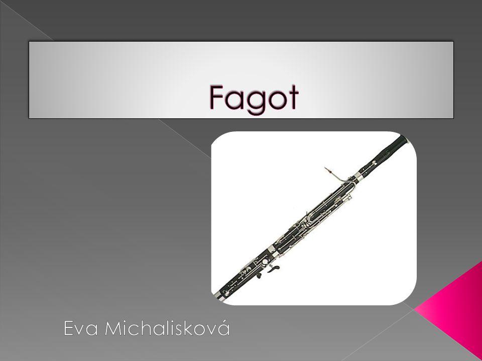 Fagot Eva Michalisková