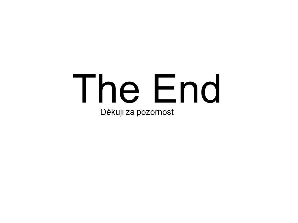 The End Děkuji za pozornost