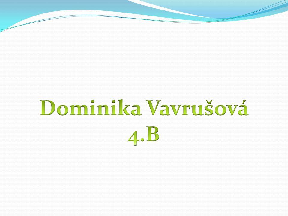 Dominika Vavrušová 4.B