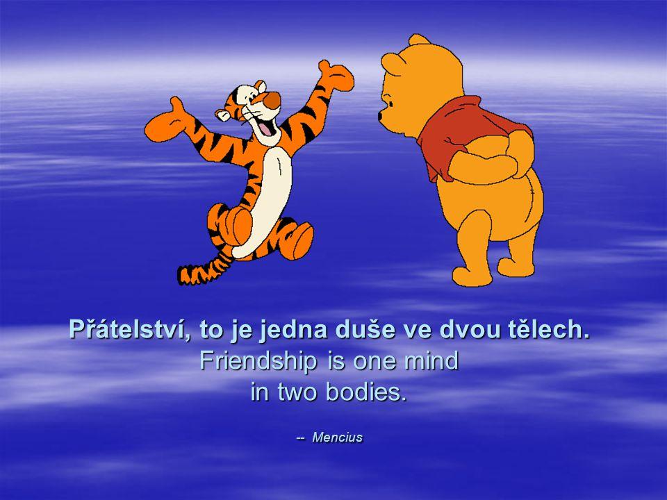 Přátelství, to je jedna duše ve dvou tělech