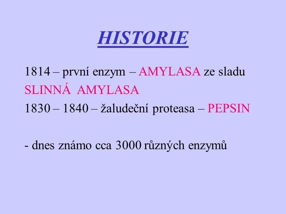 HISTORIE 1814 – první enzym – AMYLASA ze sladu SLINNÁ AMYLASA