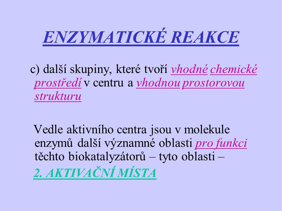 ENZYMATICKÉ REAKCE c) další skupiny, které tvoří vhodné chemické prostředí v centru a vhodnou prostorovou strukturu.