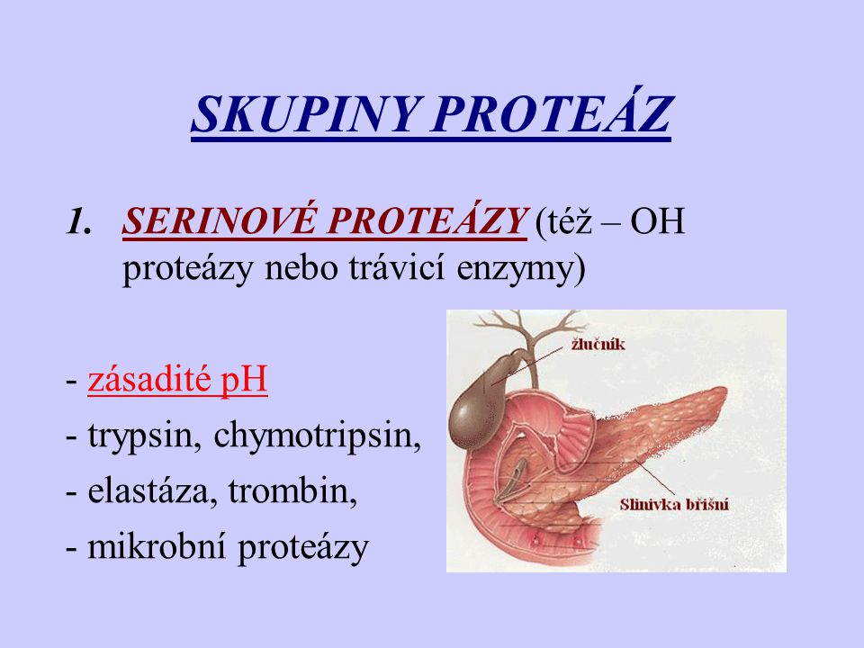 SKUPINY PROTEÁZ SERINOVÉ PROTEÁZY (též – OH proteázy nebo trávicí enzymy) - zásadité pH. - trypsin, chymotripsin,