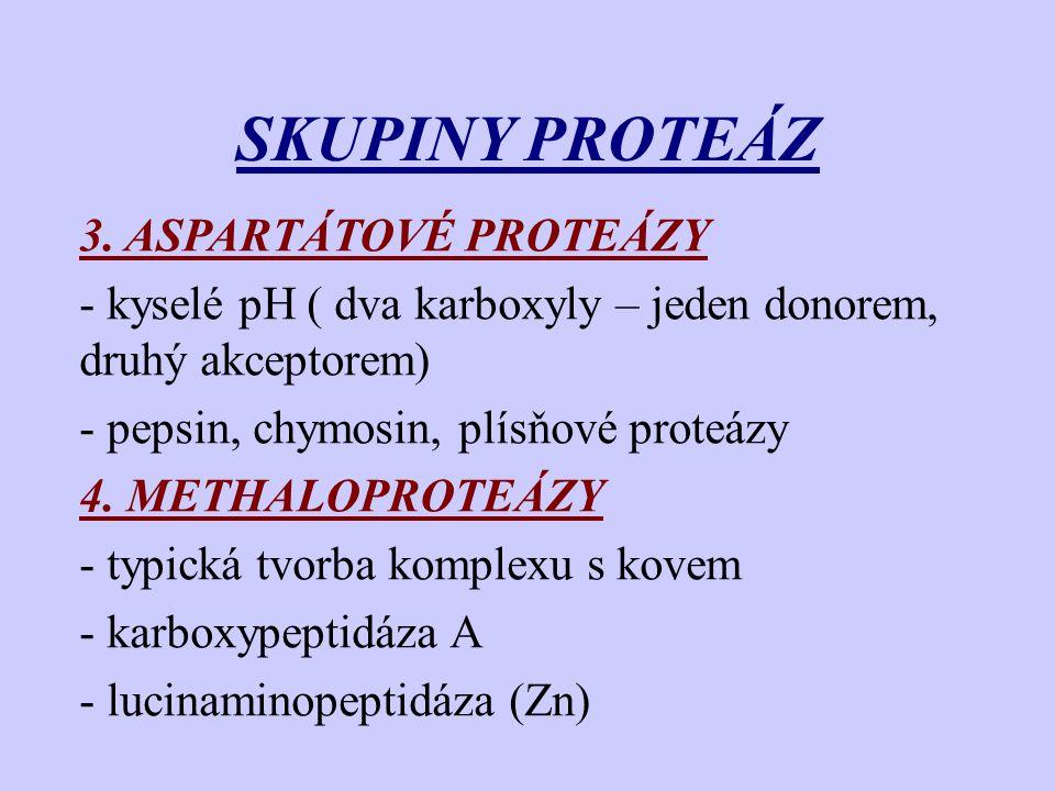 SKUPINY PROTEÁZ 3. ASPARTÁTOVÉ PROTEÁZY