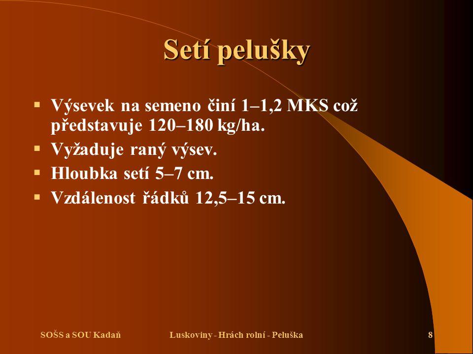 Luskoviny - Hrách rolní - Peluška