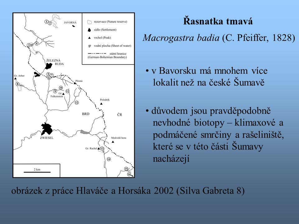 Řasnatka tmavá Macrogastra badia (C. Pfeiffer, 1828) v Bavorsku má mnohem více. lokalit než na české Šumavě.
