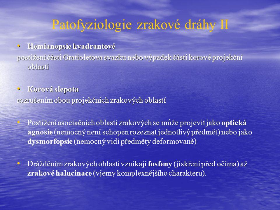 Patofyziologie zrakové dráhy II