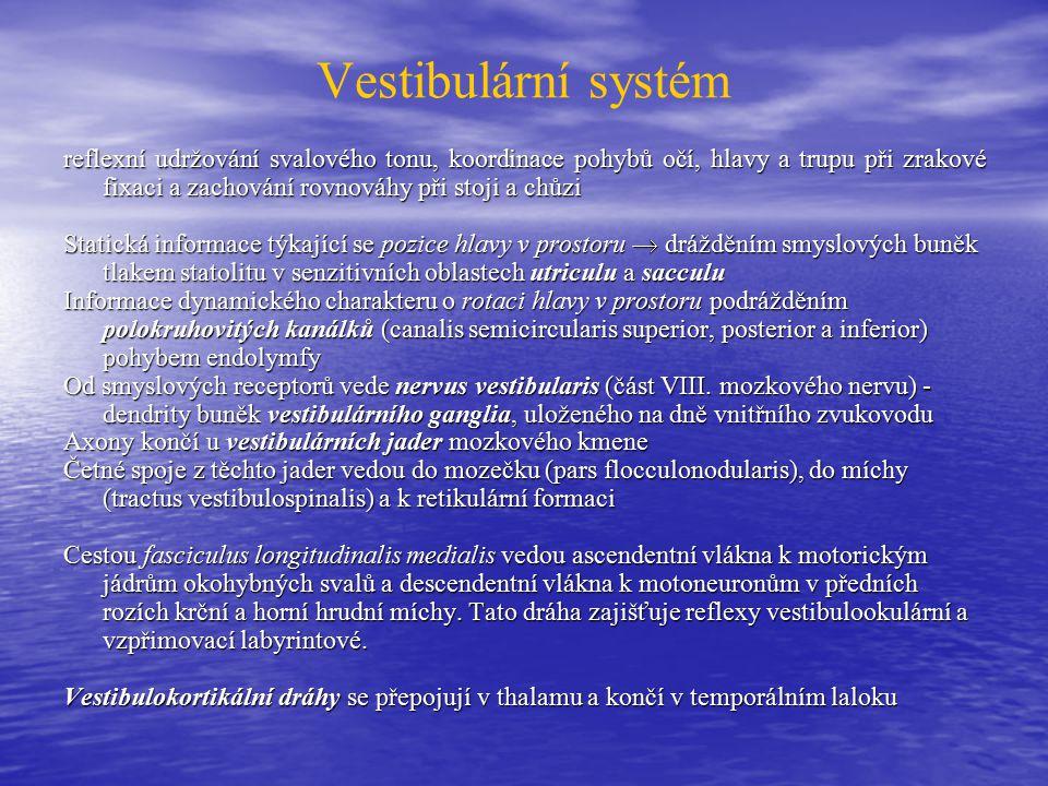 Vestibulární systém
