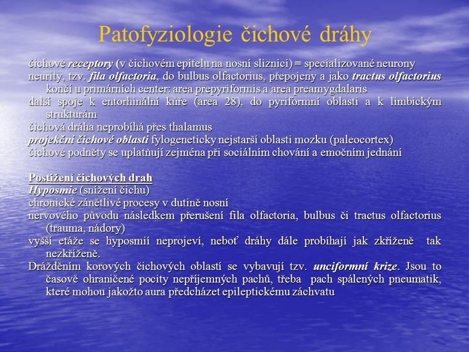 Patofyziologie čichové dráhy