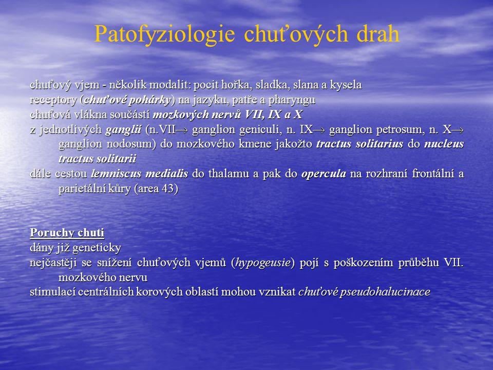 Patofyziologie chuťových drah