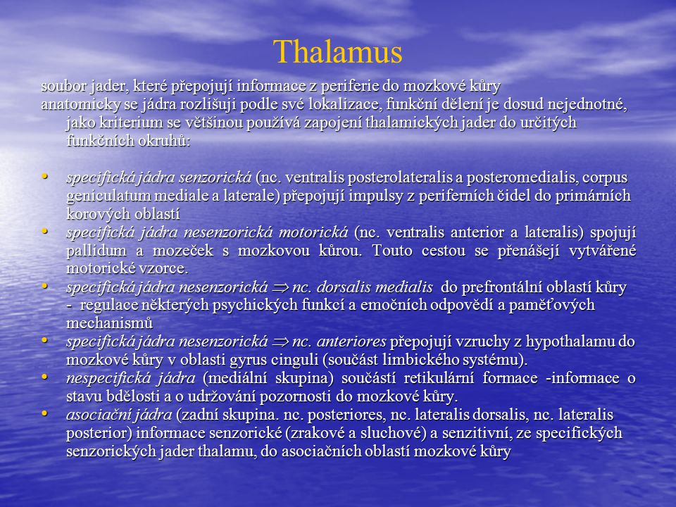 Thalamus soubor jader, které přepojují informace z periferie do mozkové kůry.