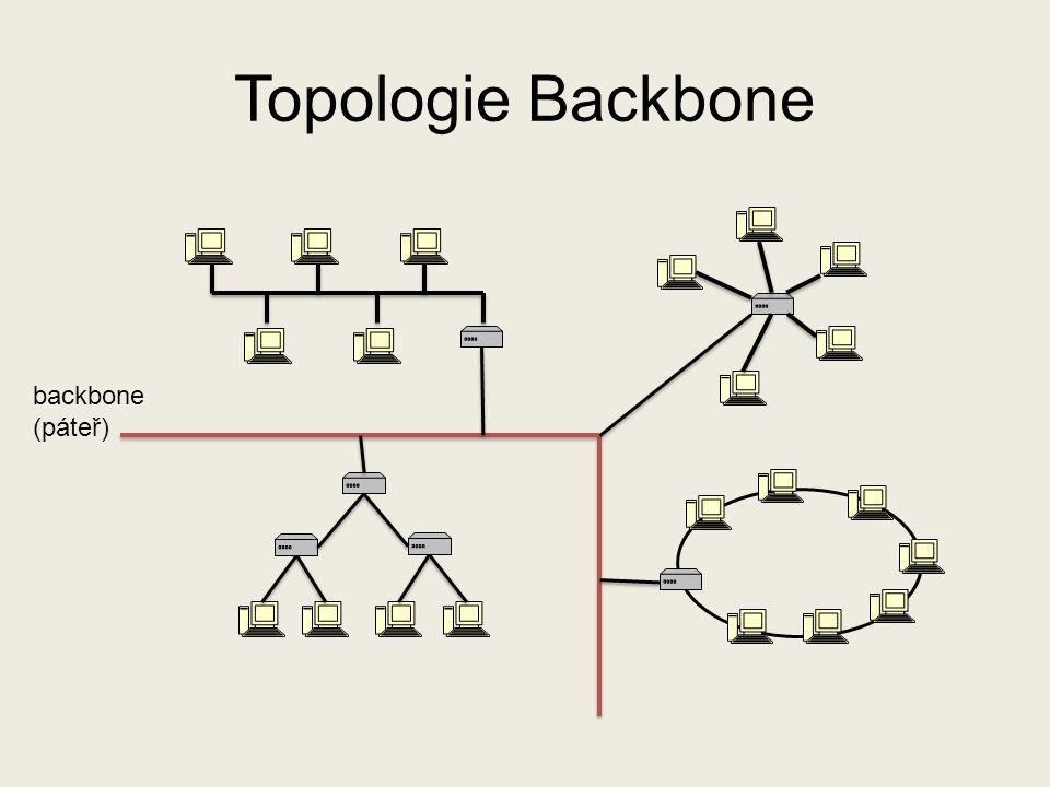 Topologie Backbone backbone (páteř)