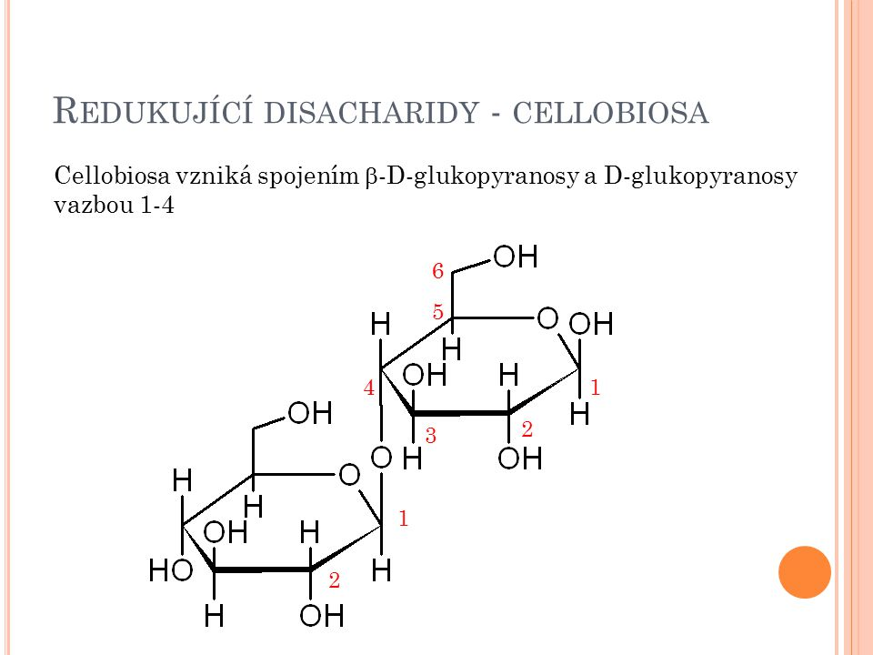 Redukující disacharidy - cellobiosa